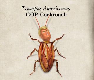 TrumpusAmericanus